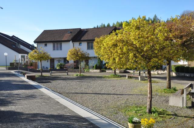 Siedlung-2014-103